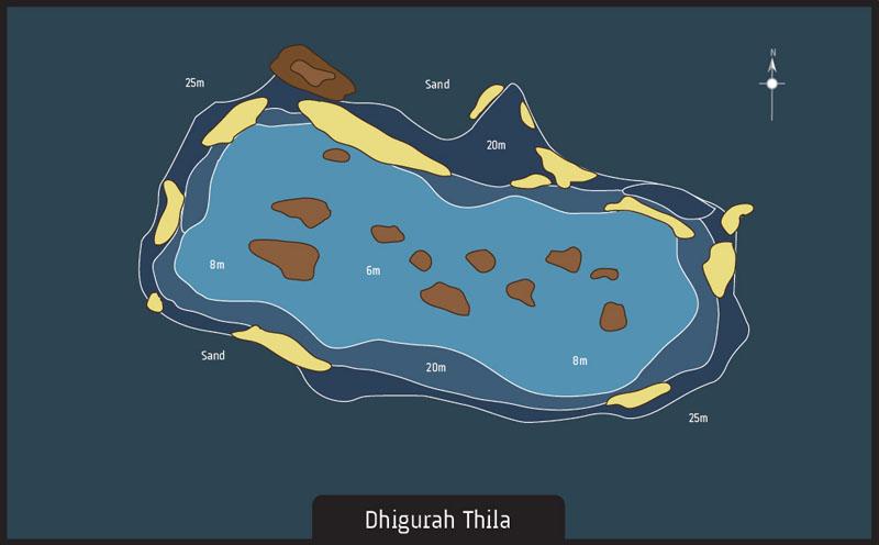 Scuba Diving Maldives Dhigurah Thila