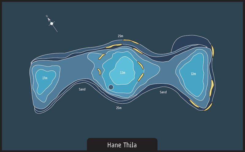 Scuba diving Maldives Hane Thila