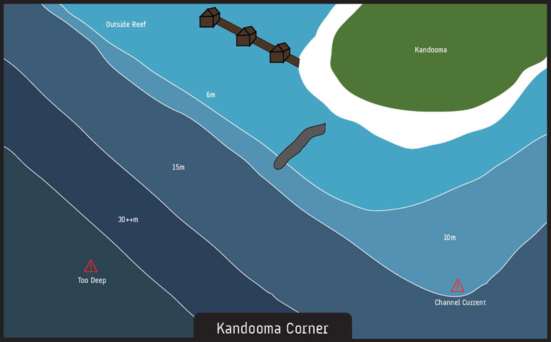 Scuba diving Kandooma Corner Maldives