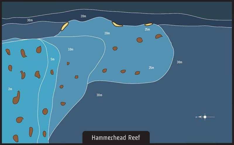 Dive site Vilamendhoo Maldives Hammerhead Reef