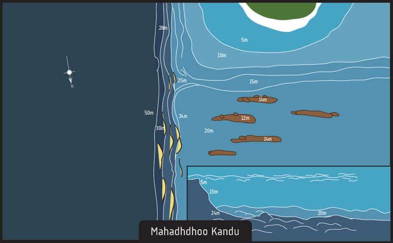 Dive site Maldives Mahadhdhoo Kandu