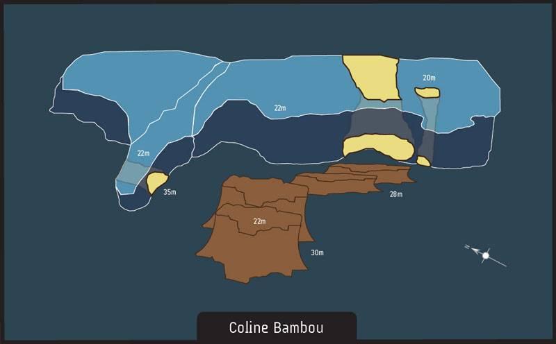 Dive site Albion Mauritius Coline bambou
