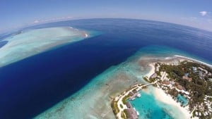 Kandooma Thila Best Dive Sites in Maldives