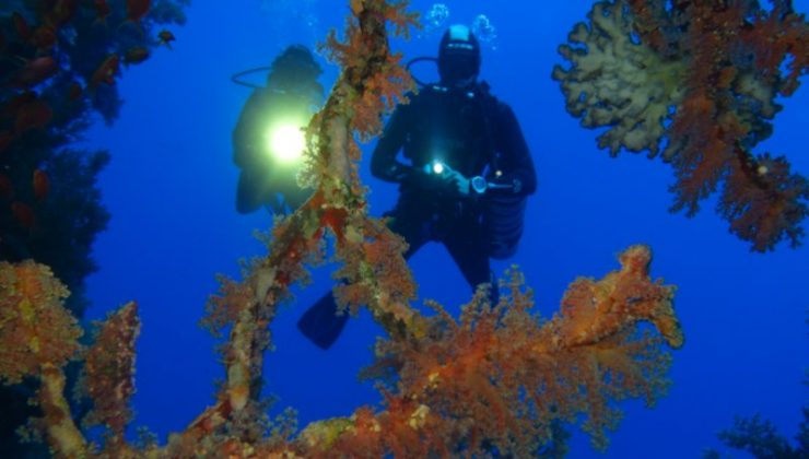 Winter offer for Euro-Divers Egypt