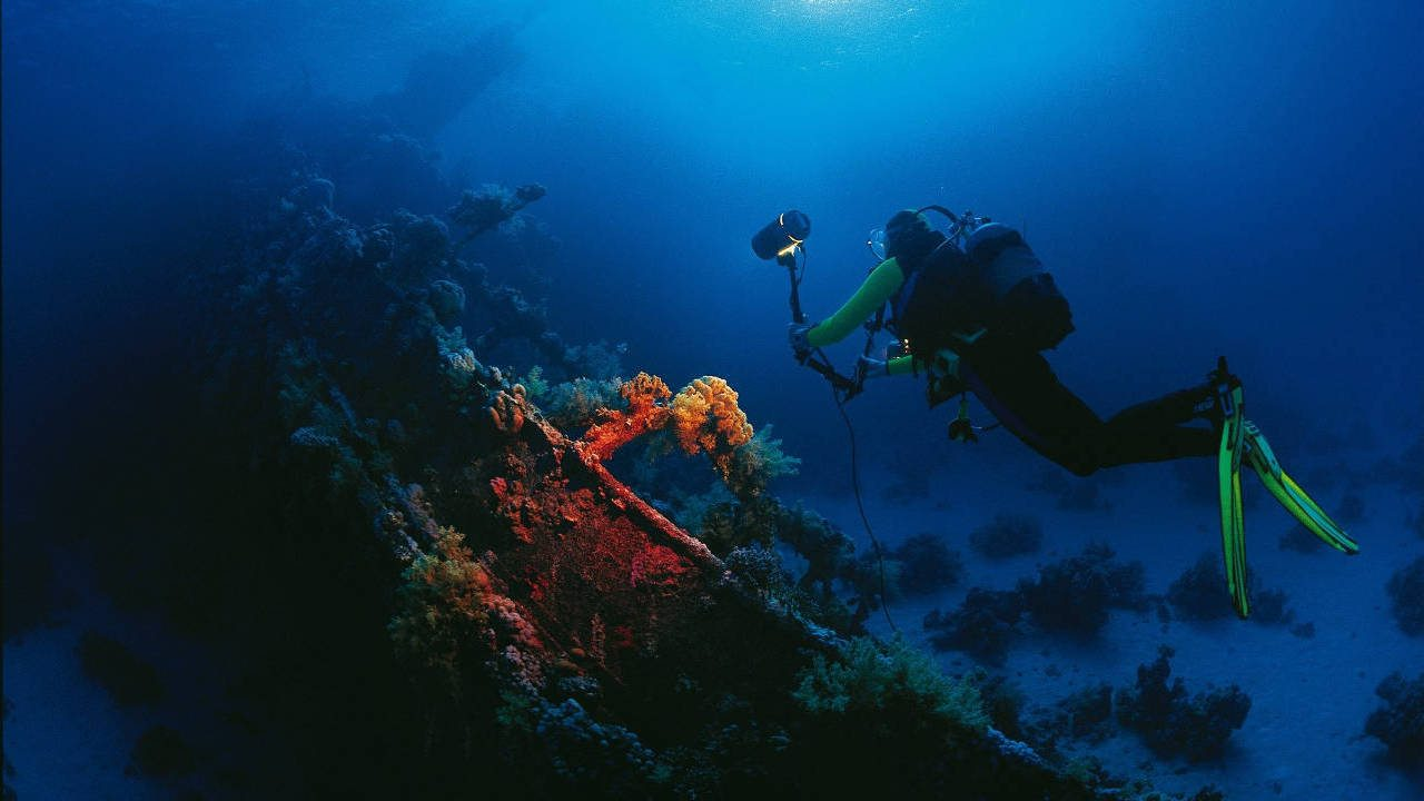 Scuba diving, diving lessons and dive trips with Euro-Divers-95