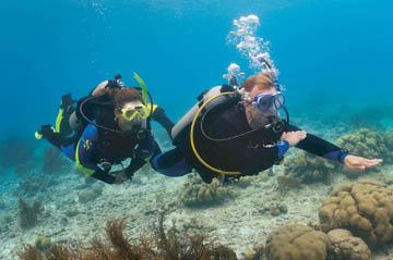 PADI rescue diver tauchen