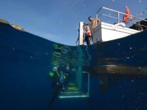 dive platform on euro divers spain boat