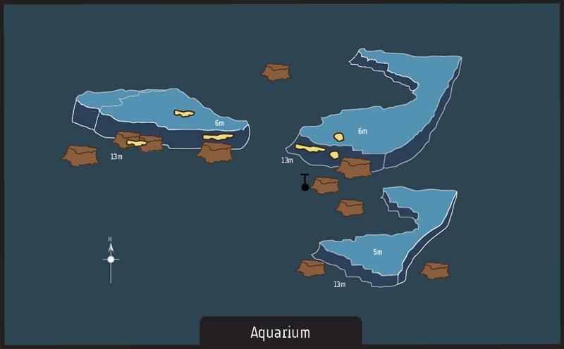 Dive site Albion Mauritius Aquarium