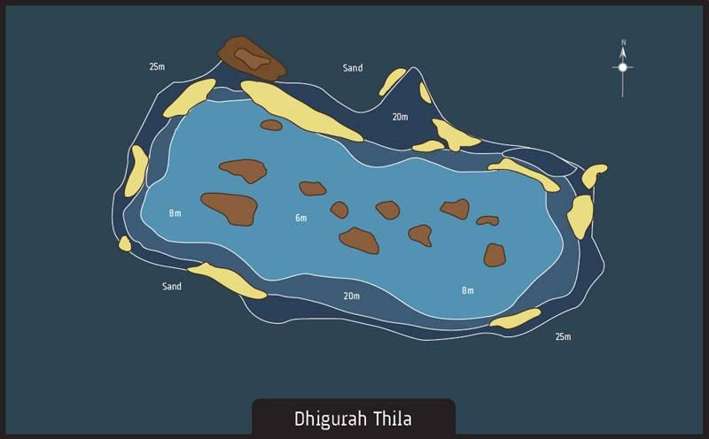 Maldives dive site Dhigurah Thila