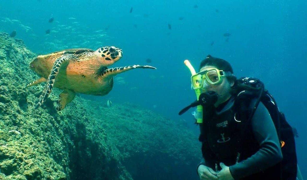 scuba diving oman muscat bandar al rowdha