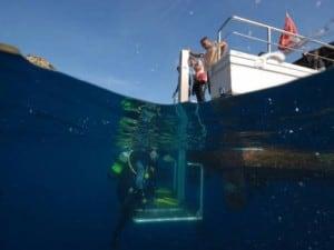 tec diving euro divers spain