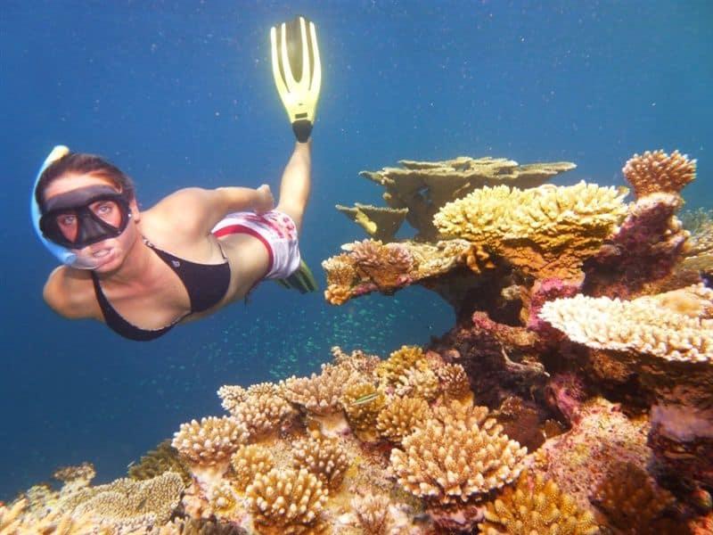 apnee maldives residence maldives euro-divers