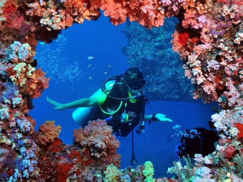 plonger aux maldives euro divers