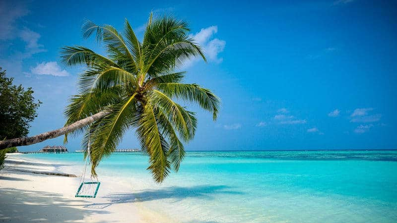 euro divers lux maldives