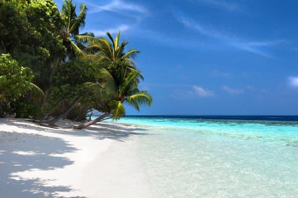 maldives world renowned diving destination