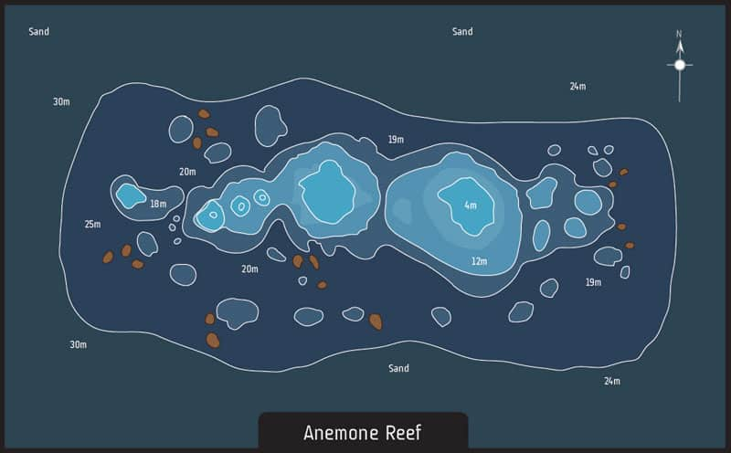 01 Anemone Reef th