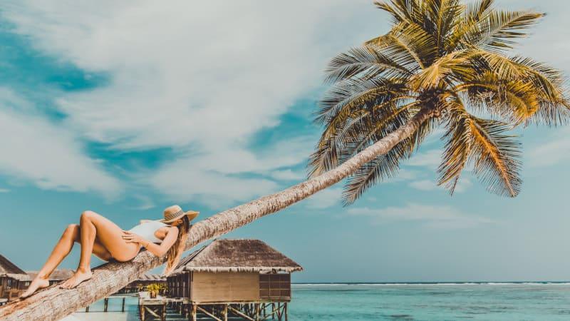 top liveaboards maldives diving holidays