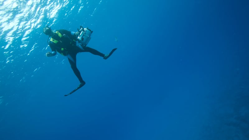 Continuing Your PADI Scuba Diving Education 2