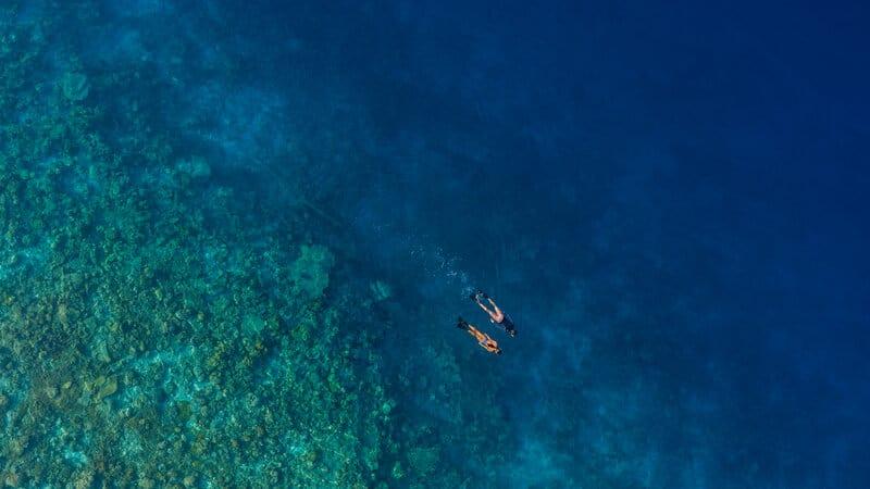 snorkeling maldives euro divers meeru resort