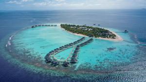 2 diving gaafu dhaalu atoll maldives