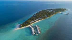 PADI 5* Dive Center In Raa Atoll