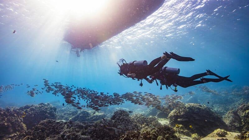PADI Go Pro - Divemaster internship & IDC Egypt Oman & Mauritius