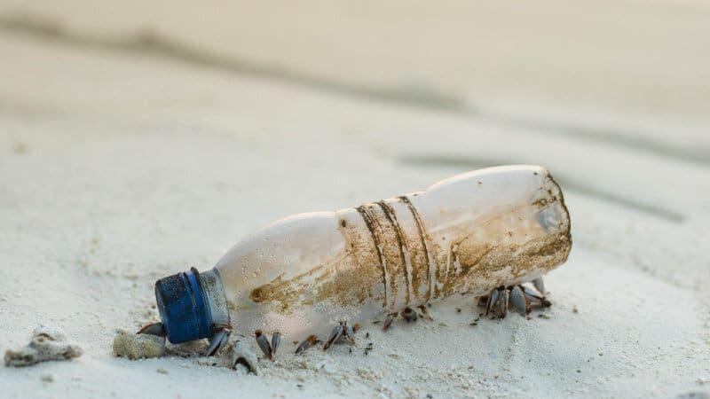 Beach clean up Maldives